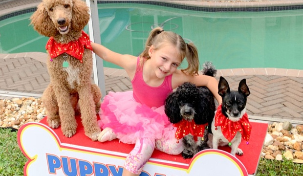 Vote for Alexis Brownley & the Puppy Pals America's Got Talent (AGT) 18 August 2020 Quarterfinal Voting App Toll-Free Text Number Online