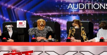 Incredible Dogs Audition Highlights in America's Got Talent (AGT) 2021