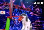 Bini the Bunny Audition Highlight in America's Got Talent (AGT) 2021