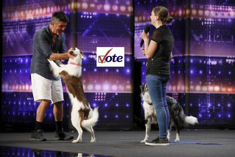 Vote Alexandra Cote America got Talent (AGT) 2021 Quarter-Final Voting App Text Number App 10 August 2021 Online